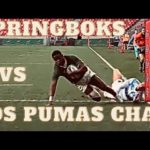 Springboks vs Los Pumas chat: first round of Rugby Championship
